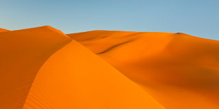 Golden Sand Dunes Panorama Royalty Free Stock Photography