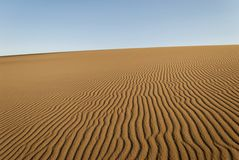 Golden Sand Dunes - ripple marks Royalty Free Stock Images