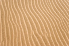 Golden sand grooves. Natural textured sand grooves background Royalty Free Stock Images