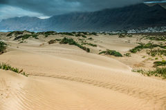 Golden sand of Lanzarote coastal dune Stock Photo