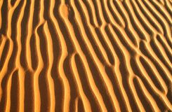 Golden sand ripples on the beach. Sand texture background beach ripple nature pattern desert abstract textured wave yellow sandy dune coast dry summer sea stock photography