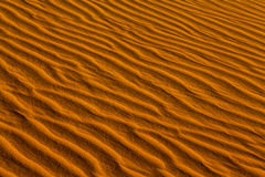 Golden sand texture background Royalty Free Stock Photo