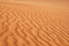 Golden sands. A golden sand dunes in dubai desert safari Royalty Free Stock Photos