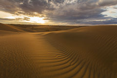 Golden sands and dunes of the desert. Mongolia Stock Image