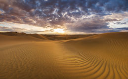 Golden sands and dunes of the desert. Stock Photography