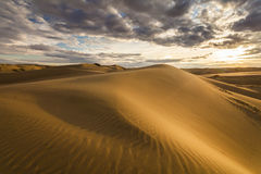 Golden sands and dunes of the desert. Royalty Free Stock Photography