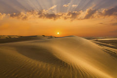 Golden sands and dunes of the desert. Mongolia.  royalty free stock photos