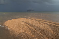 Golden Scale Dragon Spine Beach in Trang - Unseen Thailand. Golden Scale Dragon Spine Beach in Palian, Trang can see when low tide - Unseen Thailand Royalty Free Stock Image