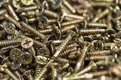 Golden Screws Macro Close Up. Background Pattern. Stock Photo