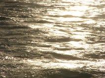 Golden Sea. Sea at sunset royalty free stock photos