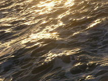 Golden Sea. Sea at sunset royalty free stock images