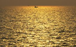 Golden sea Stock Photos