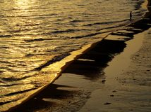 Golden sea. At sunset in Italy Stock Photography