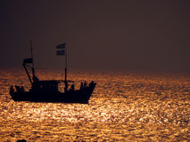 Golden Sea Stock Images