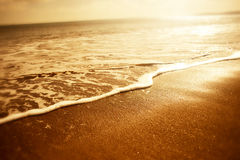 Golden Sea Foam Stock Photography
