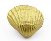 Golden sea shell Royalty Free Stock Images