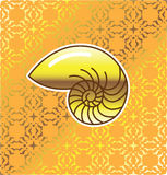 Golden Sea Shell Nautilus with golden Background Vector Stock Image