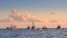 Golden sea sunrise and boats in caribbean sea. Punta Cana, Dominican Republic.  stock video footage