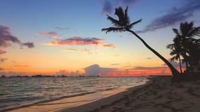 Golden sea sunrise and boats in caribbean sea. Punta Cana, Dominican Republic.  stock footage