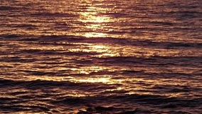 Golden Sea Waters at Sunrise stock video footage