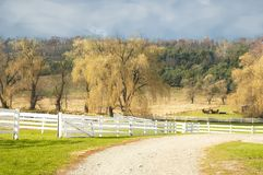 Golden season. Farm landscape Royalty Free Stock Photography