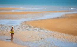 Golden send beach Stock Photography