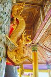 The golden serpent dragon in Tharrawaddy Min Bell House of Shwed royalty free stock images