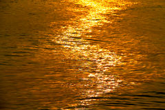 Golden shimmering Sea Water with wave,Sun light refection on sea Royalty Free Stock Photography