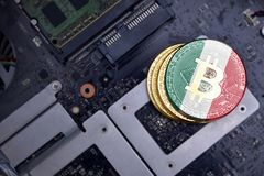 Golden bitcoins with flag of mexico on a computer electronic circuit board. bitcoin mining concept. Golden shining bitcoins with flag of mexico on a computer royalty free stock photography