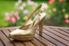 Golden Shoe Stock Image