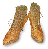 Golden shoes Royalty Free Stock Photos