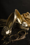 Golden Shoes. For womens with a flower detail Royalty Free Stock Photo