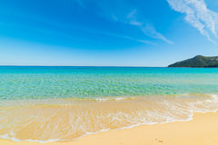 Golden shore in Cala Sinzias Royalty Free Stock Images