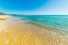Golden shore in Costa Rei Stock Image