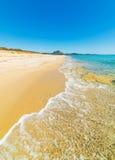 Golden shore in Costa Rei Stock Images