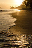 Golden Shore in Hawaii. Sunset on shore in a hawaii Royalty Free Stock Image