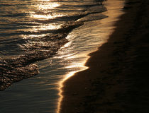 Golden Shoreline Stock Image