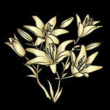 Golden silhouette Lily. Royalty Free Stock Images