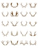 Golden silhouettes of deer horns. Golden silhouettes of different deer horns on a white background Stock Images