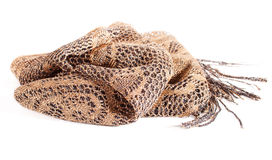 Golden-Silver Women's Shawl Royalty Free Stock Photography