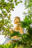Golden sitting Buddha statue in green tropical trees leaves fram. E with selective focus on the face Stock Images