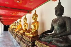 Golden sitting Buddha statues in Wat Pho Royalty Free Stock Photos