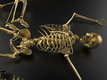 Golden skeleton. 3D render illustration of a golden skeleton. The composition is isolated on a dark background with shadows Stock Photography