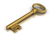 Golden Skeleton Key. Beautiful golden skeleton key on white reflective surface royalty free illustration