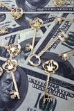 Dollars background with a skeleton keys Royalty Free Stock Images