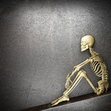 Golden skeleton Stock Images