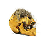 Golden Skull Stock Photo