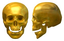 Golden Skull Royalty Free Stock Photo