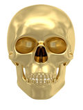 Golden skull isolated on white Royalty Free Stock Photos
