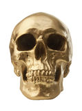 Golden skull on white background Stock Images